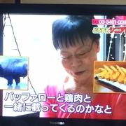 NHK「あさイチ」に登場??の画像